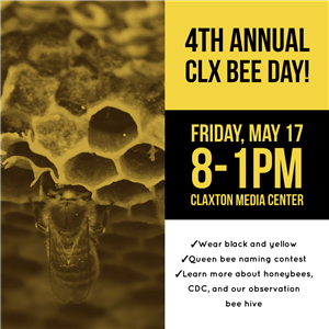4th Annual Bee Day!